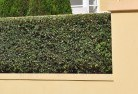 Bonner Hard landscaping surfaces 8