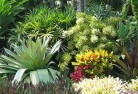 Bonner Sustainable landscaping 3
