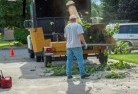 Bonner Tree cutting services 13